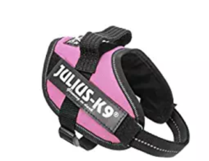 pink julius K9 harness