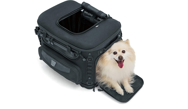 Compact motorcycle dog carrier