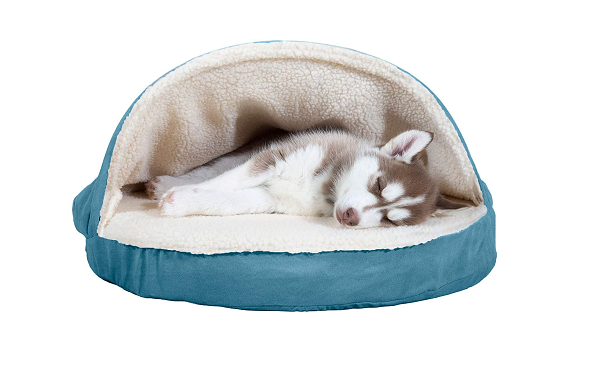 Orthopedic bed for small dog