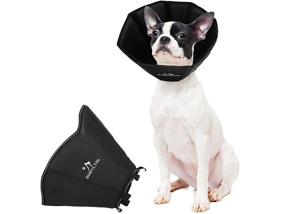 Foam padded recovery dog collar