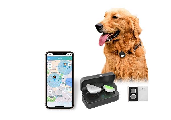 GPS dog collar Petfon