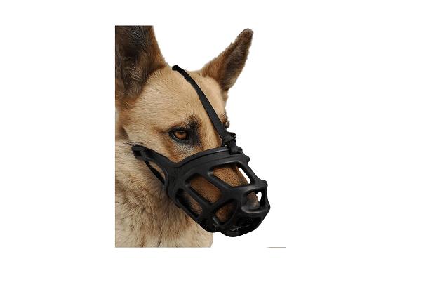 Anti-bark and anti-bite muzzle
