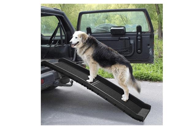 Cheap dog ramp