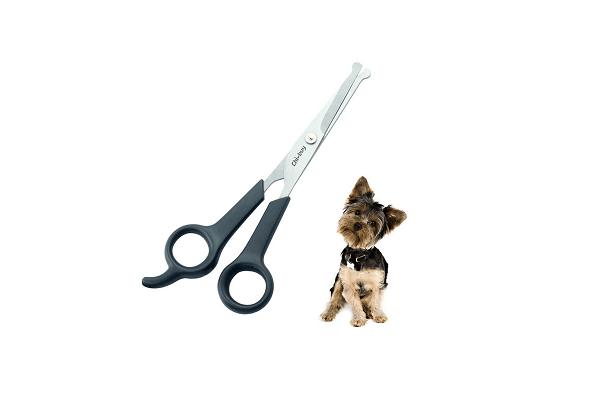 Head and leg scissors