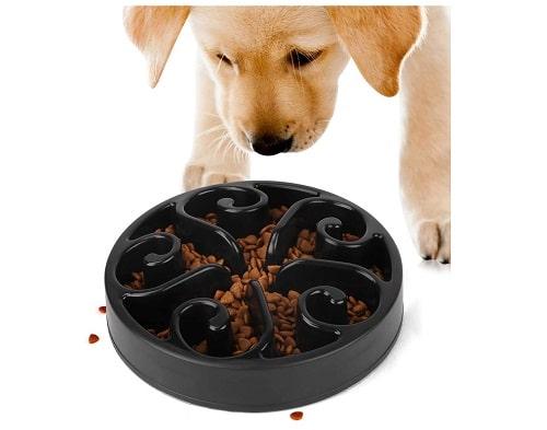 Dog bowl for slow feeding
