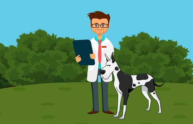 drawing of a dog and a vet