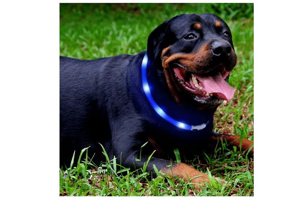 waterproof led collar