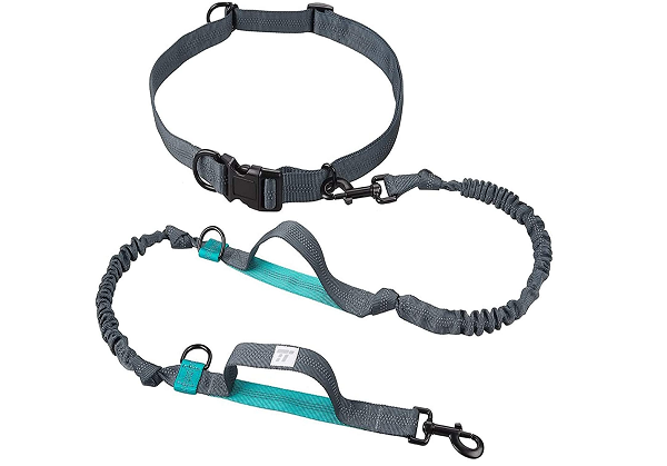 Leash to run with your dog