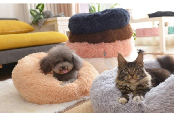 soothing bed for dogs