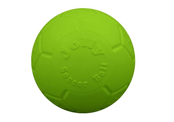 Green dog ball