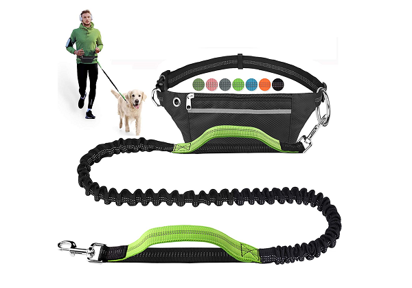 Long jogging leash with dog