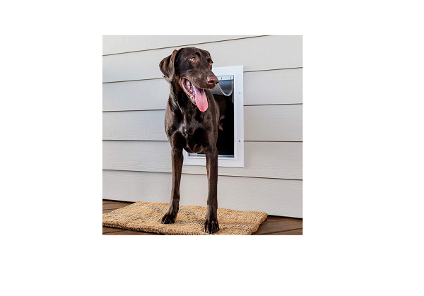 Petsafe door - ideal for large dogs