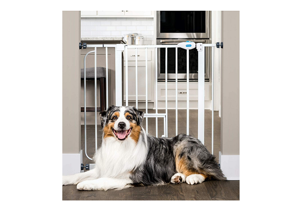 Barrier of house for animals