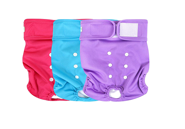 Washable dog diaper - several sizes available