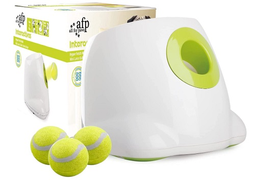 Automatic ball machine for dogs